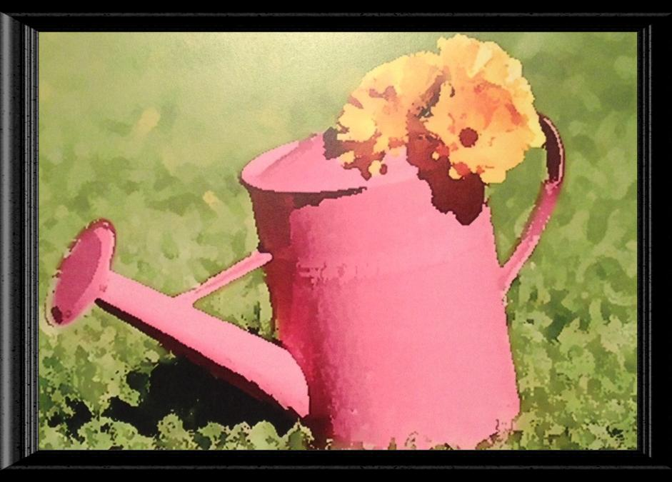 Pink Watering Can Image